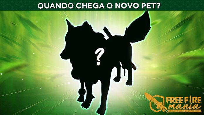 Data de Chegada do Novo Pet Raposa Prateada