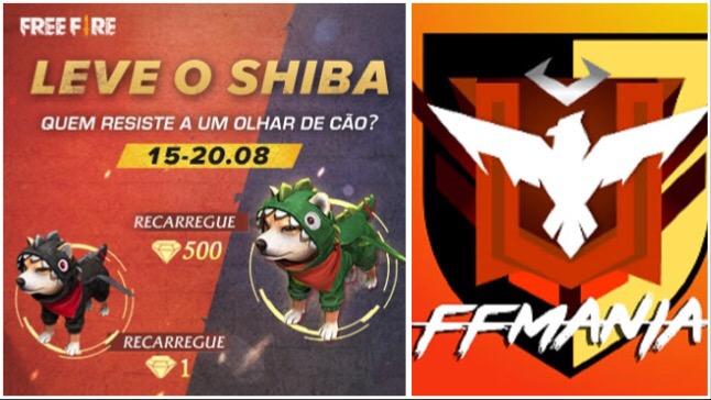 Ganhe o Novo Pet Shiba: Evento de Recarga