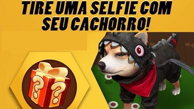 Garena: Tire uma Foto com o seu Cachorro!
