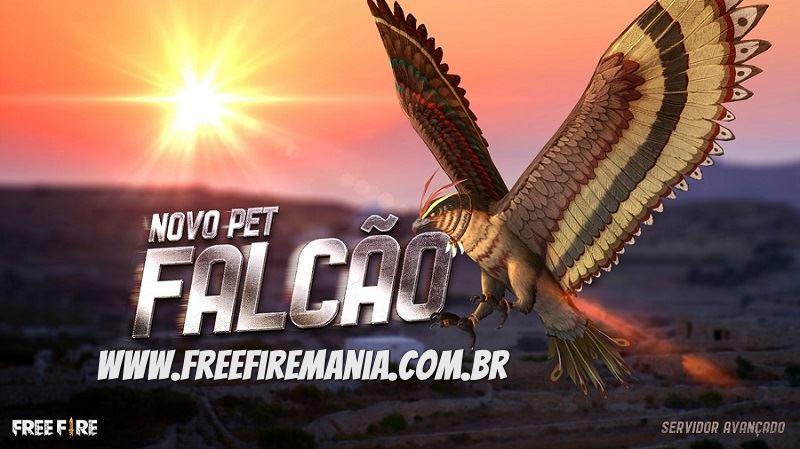 Novo Pet Falcão Free Fire